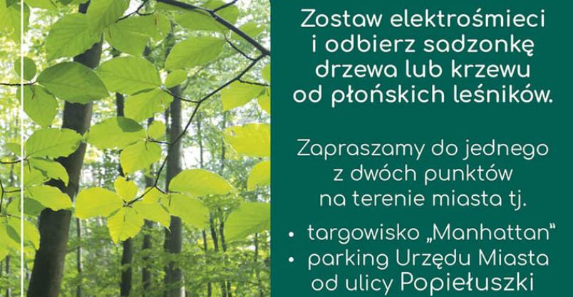 Drzewko za elektrośmieci Kliknięcie w obrazek spowoduje wyświetlenie jego powiększenia