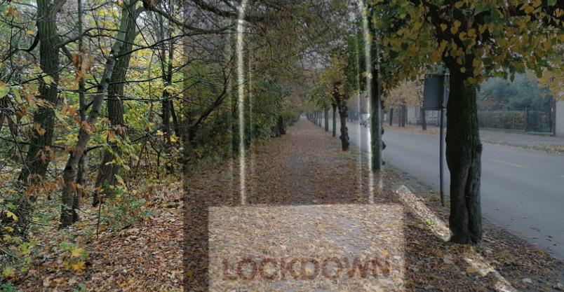 """""""Wymarłe miasteczko"""". Skuteczność lockdownu pod znakiem zapytania Kliknięcie w obrazek spowoduje wyświetlenie jego powiększenia"""